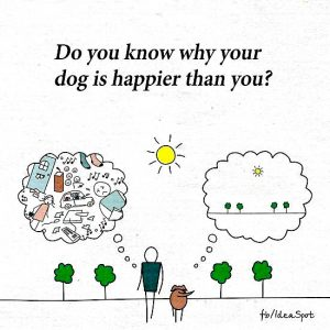is your dog happier than you?